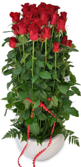 מגדל ורדים