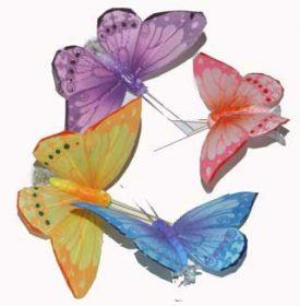 פרפרים צבעוניים