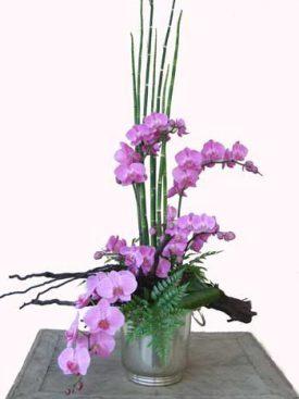סידור פרחים מעוצב מסחלבים צילום וידאו בדף