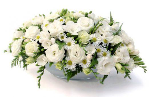 פנינה : סידור פרחים מיוחד - שדה פרחים