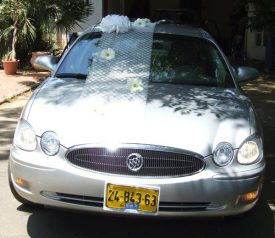 קישוט רכב מעוצב עם רשת מיוחדת פונפונים ופרחים