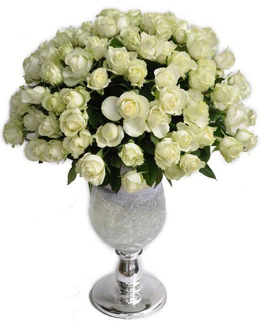 סידור 100 ורדים