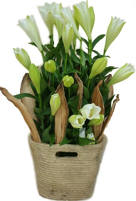 סידור מיוחד בסל מקרמיקה - שדה פרחים משלוחי פרחים