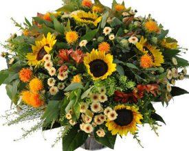 sun flowers - שדה פרחים חנות פרחים
