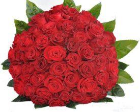 60 ורדים