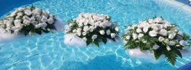 סידורי פרחים צפים על מים