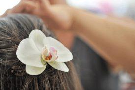 פרח סחלב סיכה לראש