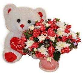 דובי מתוק