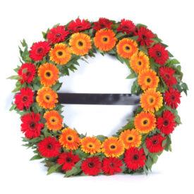 זר אבל מעוצב מגרברות שתי צבעים -שדה פרחים משלוחים